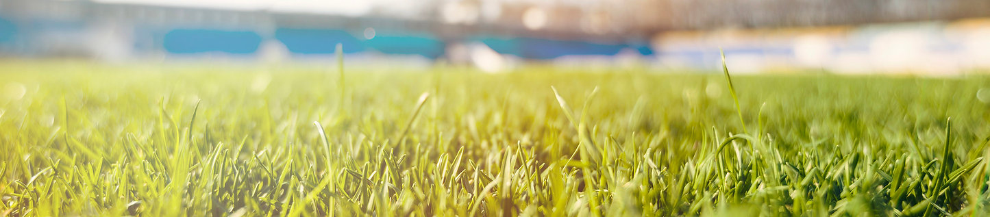 futbol___.jpg