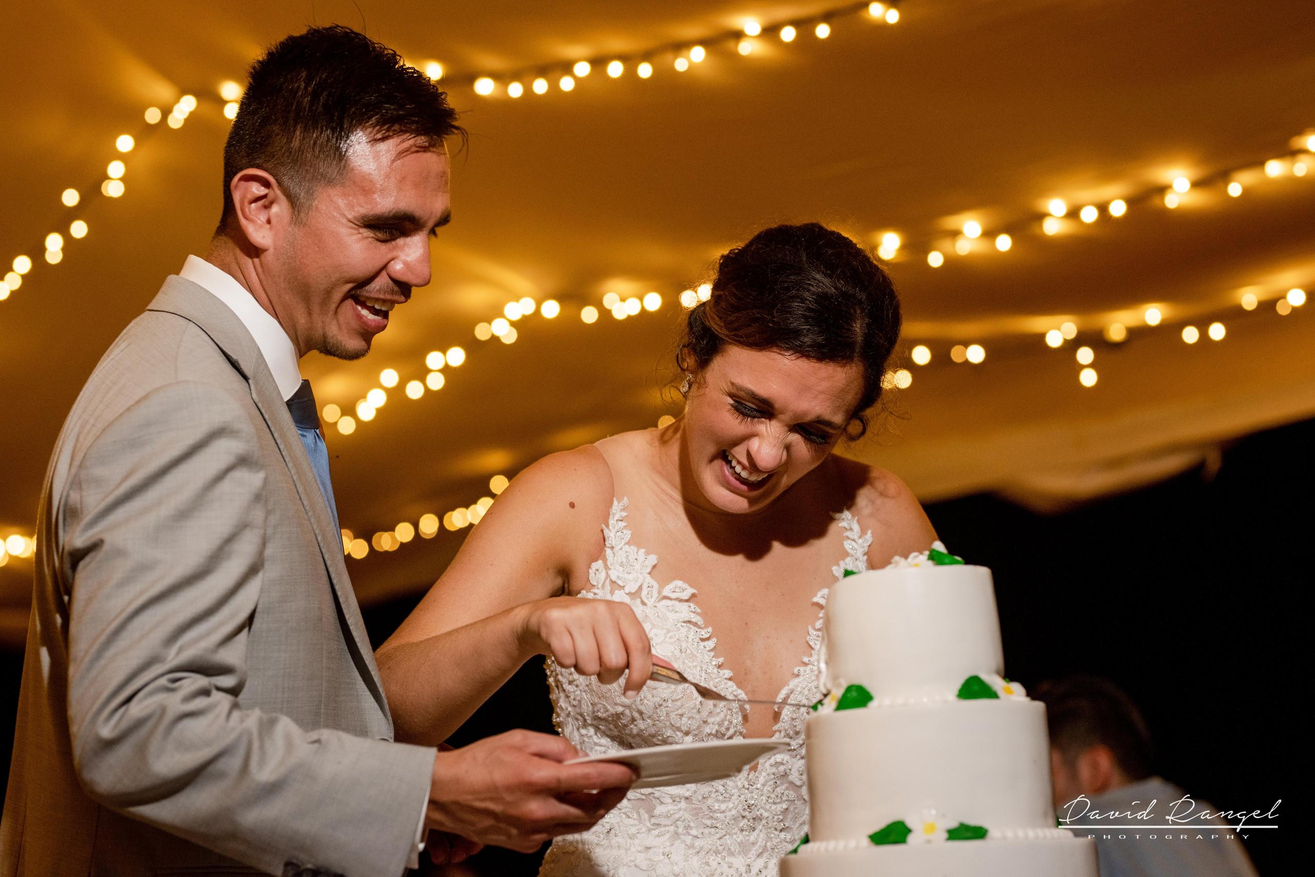cake+cutting+bride+groom+reception