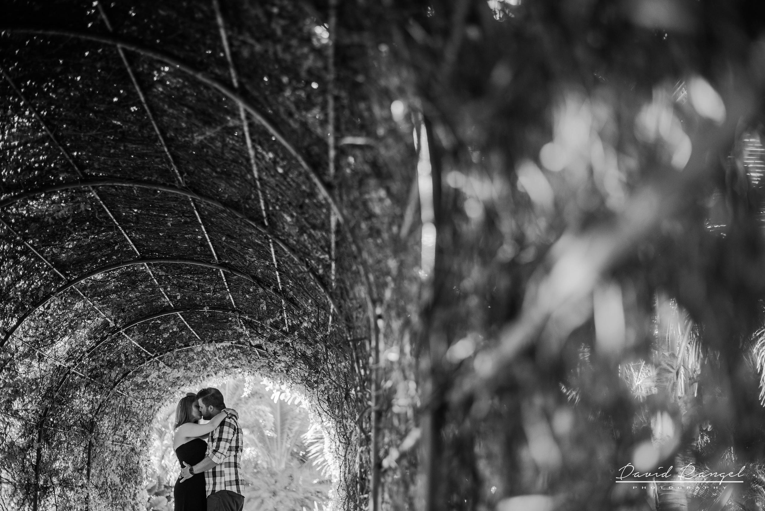 playa+del+carmen+wedding+photographer