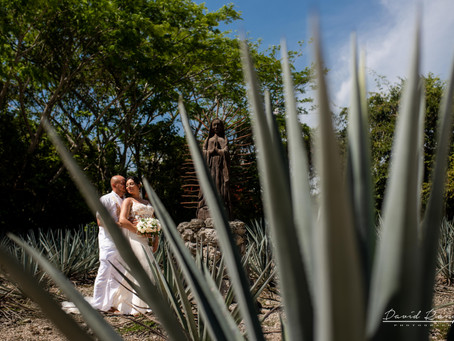 Hotel Occidental Xcaret | Destination Wedding, Diana & Jose | Playa del Carmen, Riviera Maya, Mexico