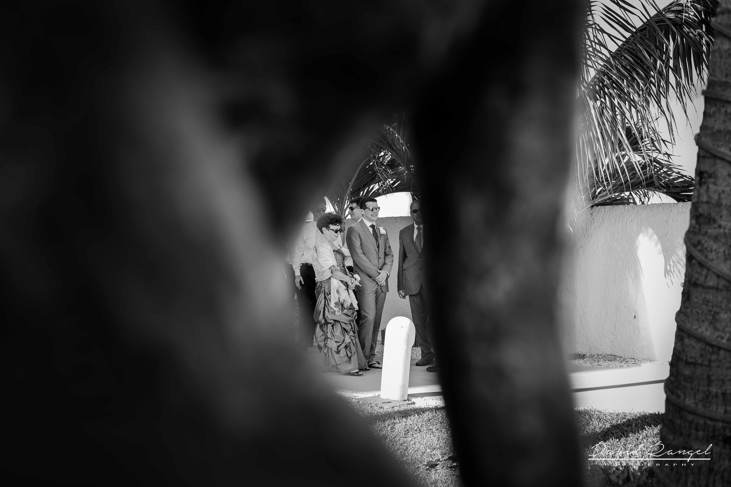 david rangel photography