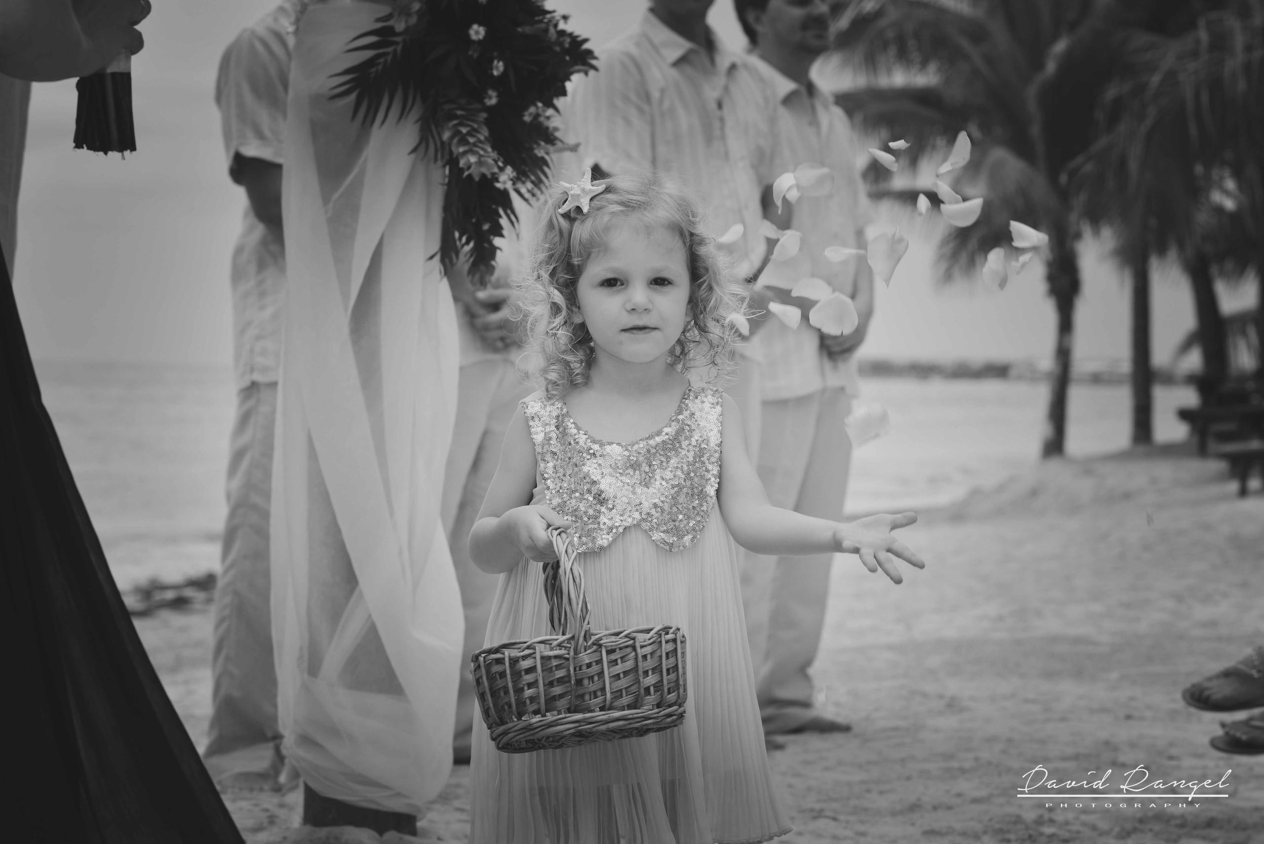 wedding+photographer