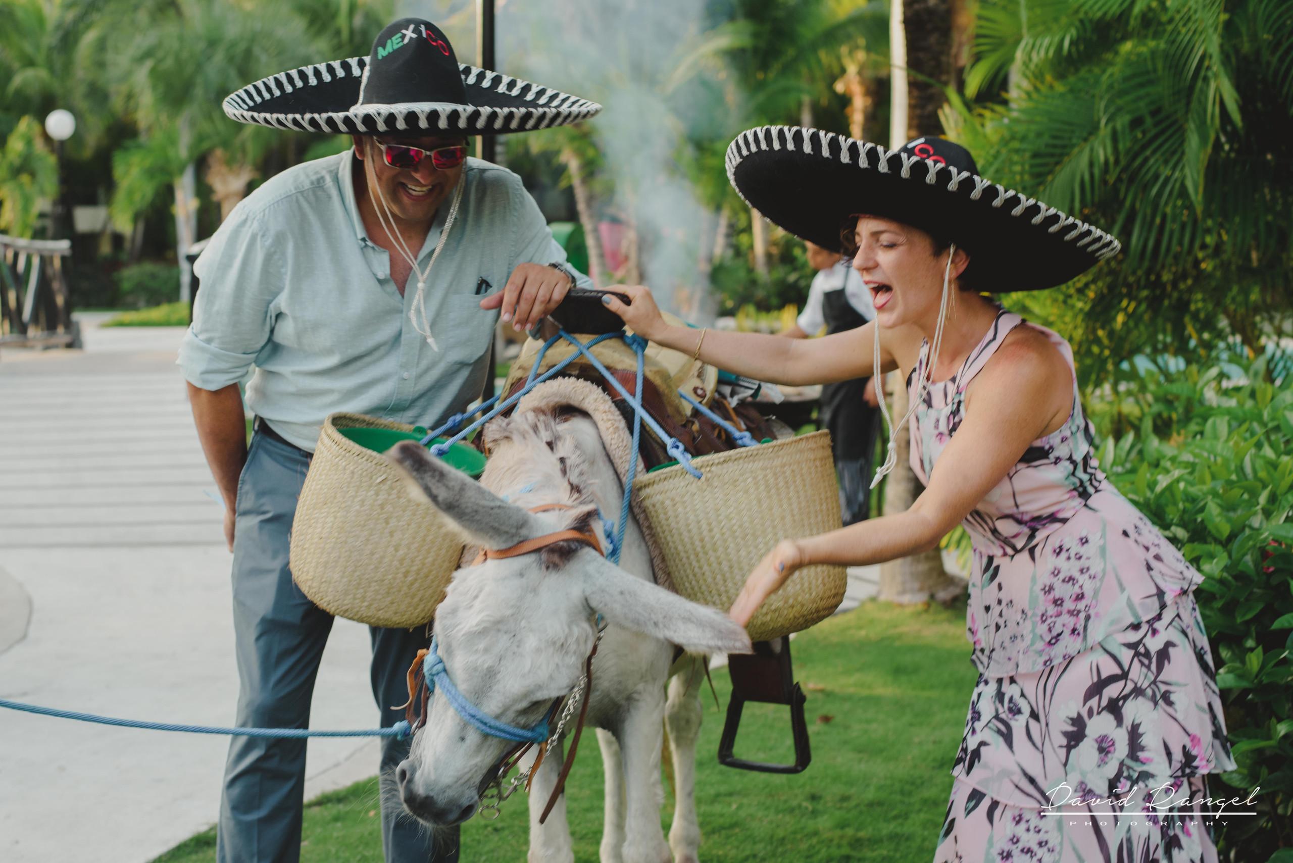 donkey+photo+guest+garden+reception+mexican+sombreros+hats