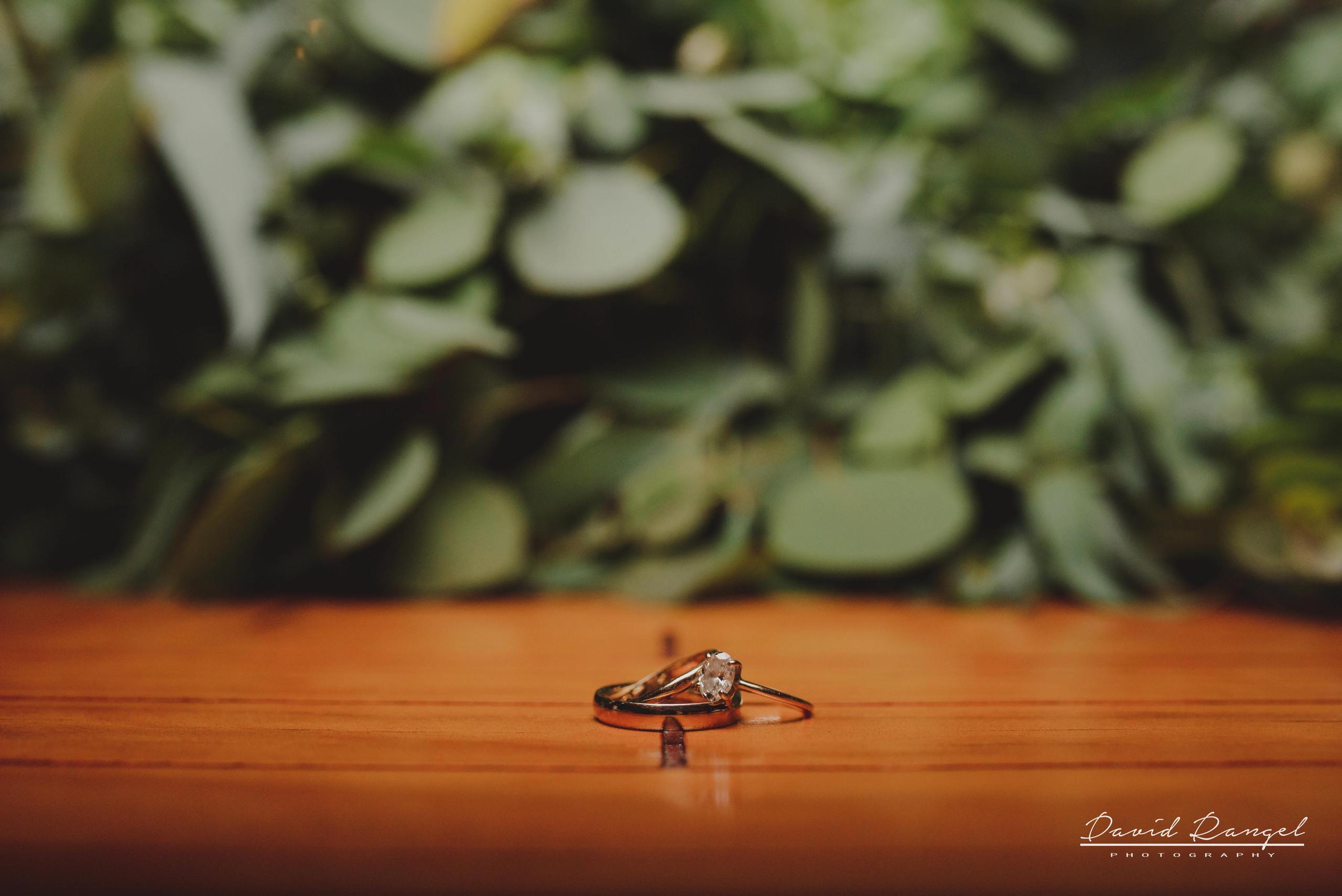 ring+wedding+reception+bride+groom