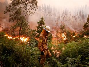 Situação em Portugal ainda é 'preocupante', dizem autoridades sobre incêndio