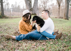 ORCHARD ENGAGEMENT SESSION with the cutest puppy