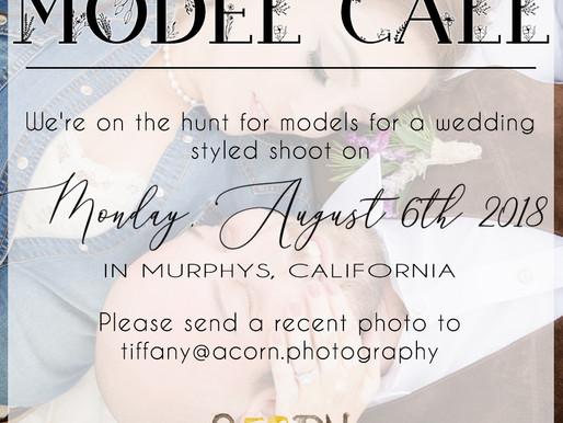 MODEL CALL | VENTICELLO STYLED WEDDING SHOOT | MURPHYS, CALIFORNIA