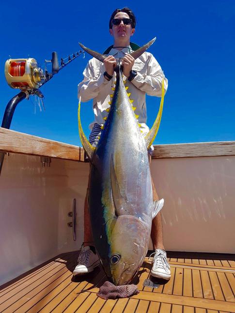 Yellowfin Tuna- Heavy tackle