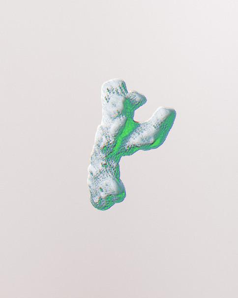 Dead white coral
