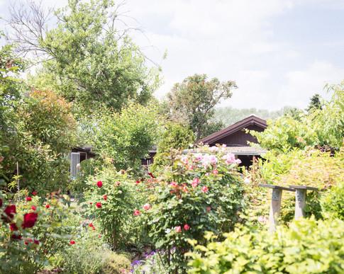 Study garden