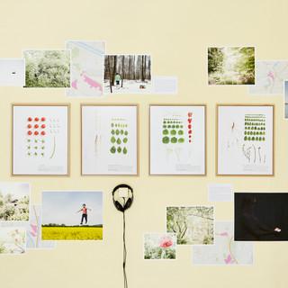 Mixed media installation - Voies Off, Arles, 2015