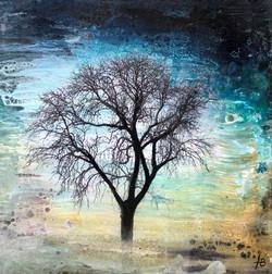 Treelogy #2