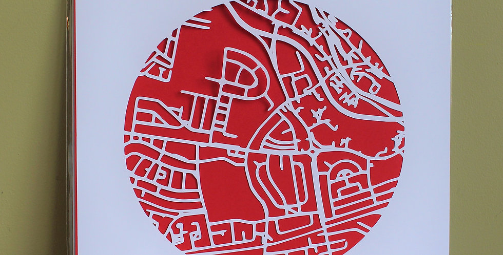 Ballyfermot papercut map