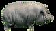 cerdo-vietnamita-khWH--620x349%40abc_edi