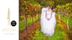 Featured wedding: Dave & Lori