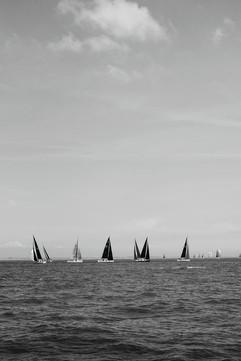 sails.jpg