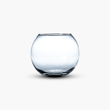 Empty Fish Bowl