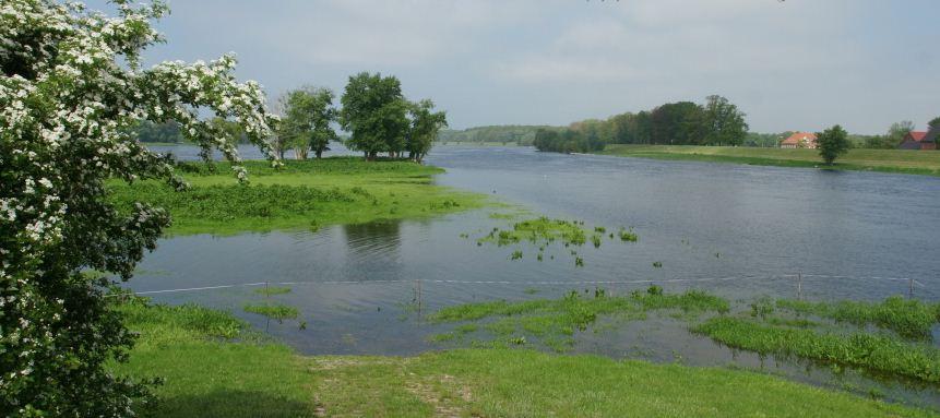 Elbe Havel.JPG