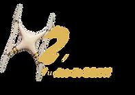 Logo H2M vuelos de dron
