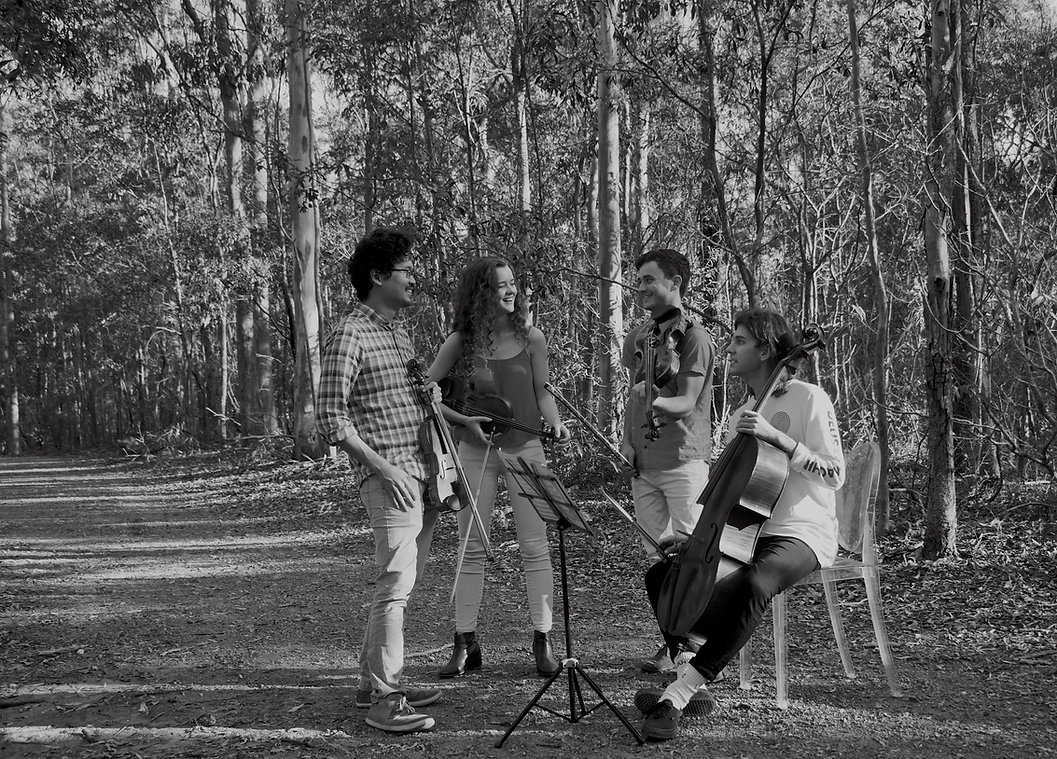 Music improvisation in Mt Coot-tha Forest