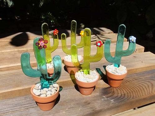 Potted Cacti - Saguaro