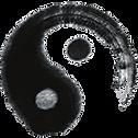 taichi-logo-3.png