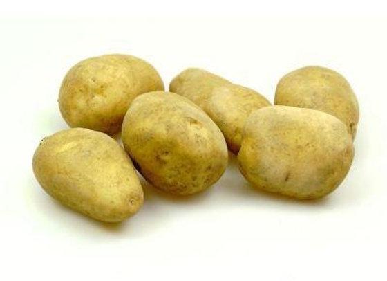 "Kartoffel ""Montana"""