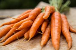 WirGemüse.de bringt erzeugernahes Bio-Gemüse