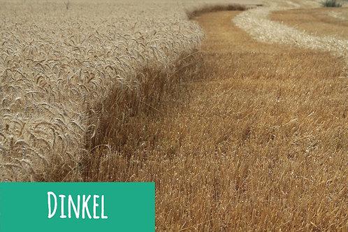 Dinkel-Getreide