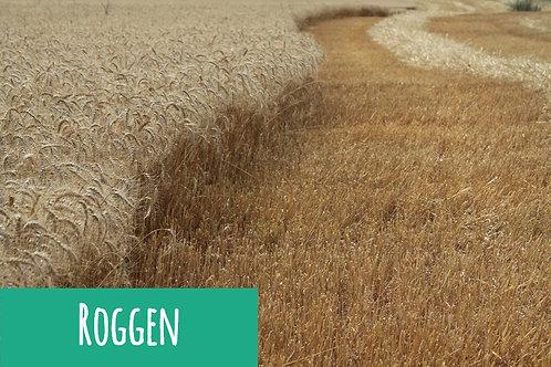Roggen-Getreide