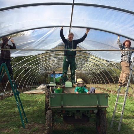 Urban Farming - die Helden auf dem Feld