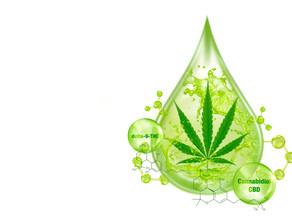 La marihuana y la artritis