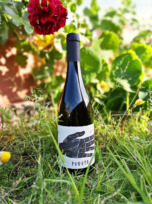 Vino Tinto Vinya Santa Clara 2019 Eco y Vegan