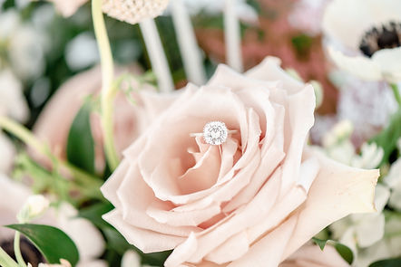 LM Design and Photography |Styled Shoot-