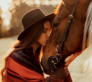 Intuition for Equestrians - The Workshop