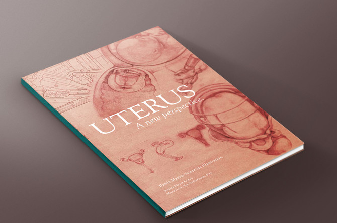 Uterus book, now available for purchase