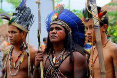 Realidade Indígena no Brasil