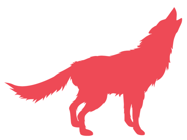coyote-midia-35.png