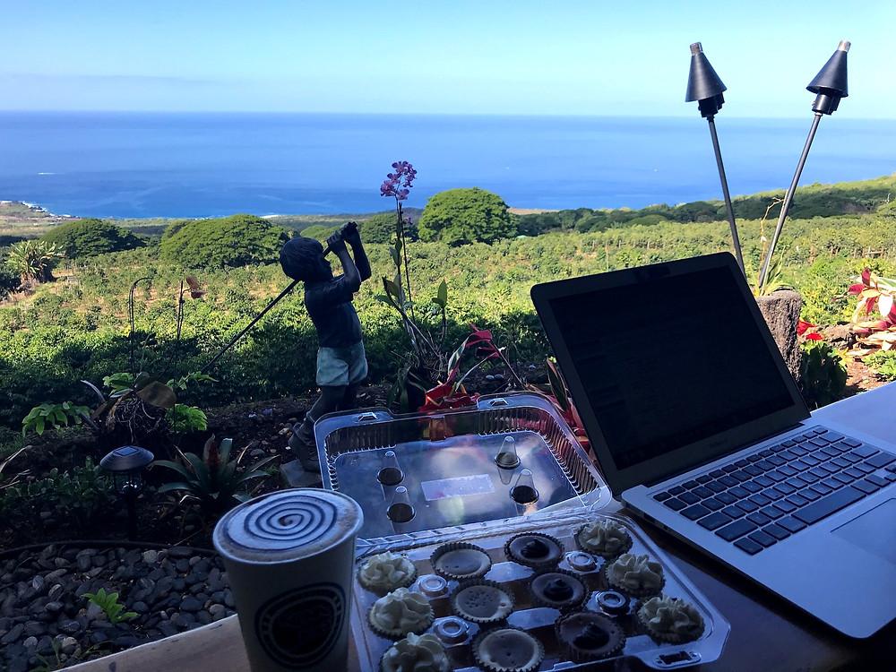 Working remotely Interoperate Kailua Kona Hawaii
