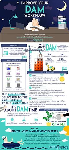 DAM_Infographic Statistics Interoperate Illustration