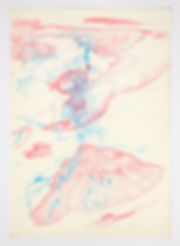1053_Revealer_(study)_crayon on paper_20