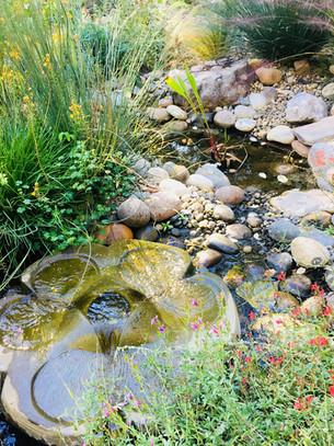 FlowFrom pond.jpg