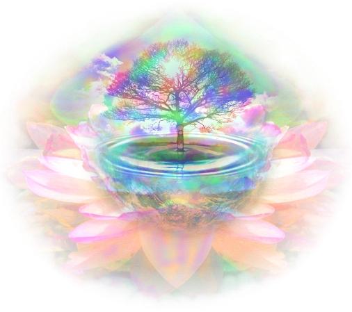 earth+tree+lotus+water+master.jpg