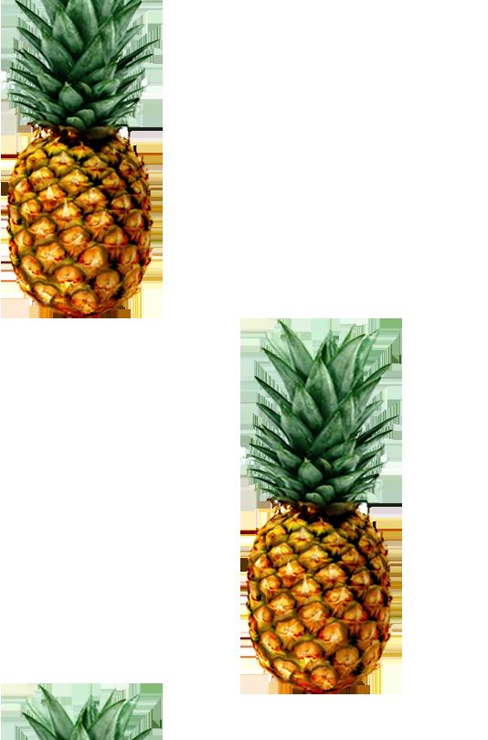 patrón de la piña