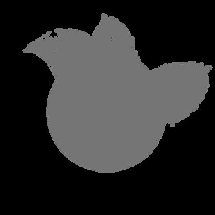 header logo centre.png