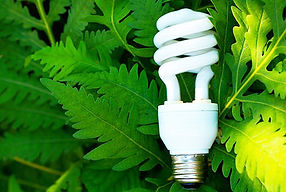 eco_friendly_lightbulb.jpg