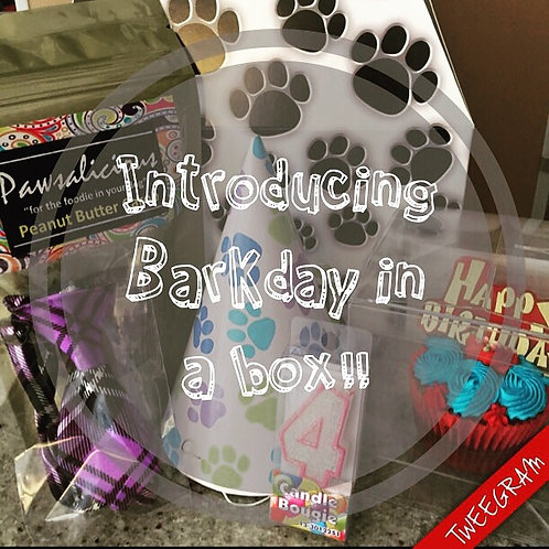 Barkday In a Box