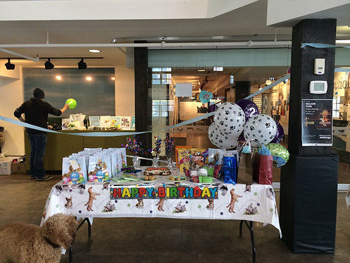 Dog Birthday Party Package 1