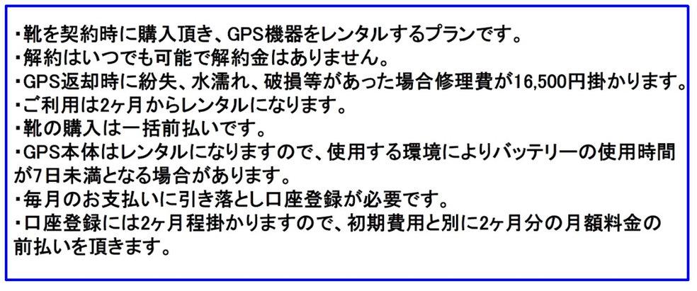 レンタル説明.jpg