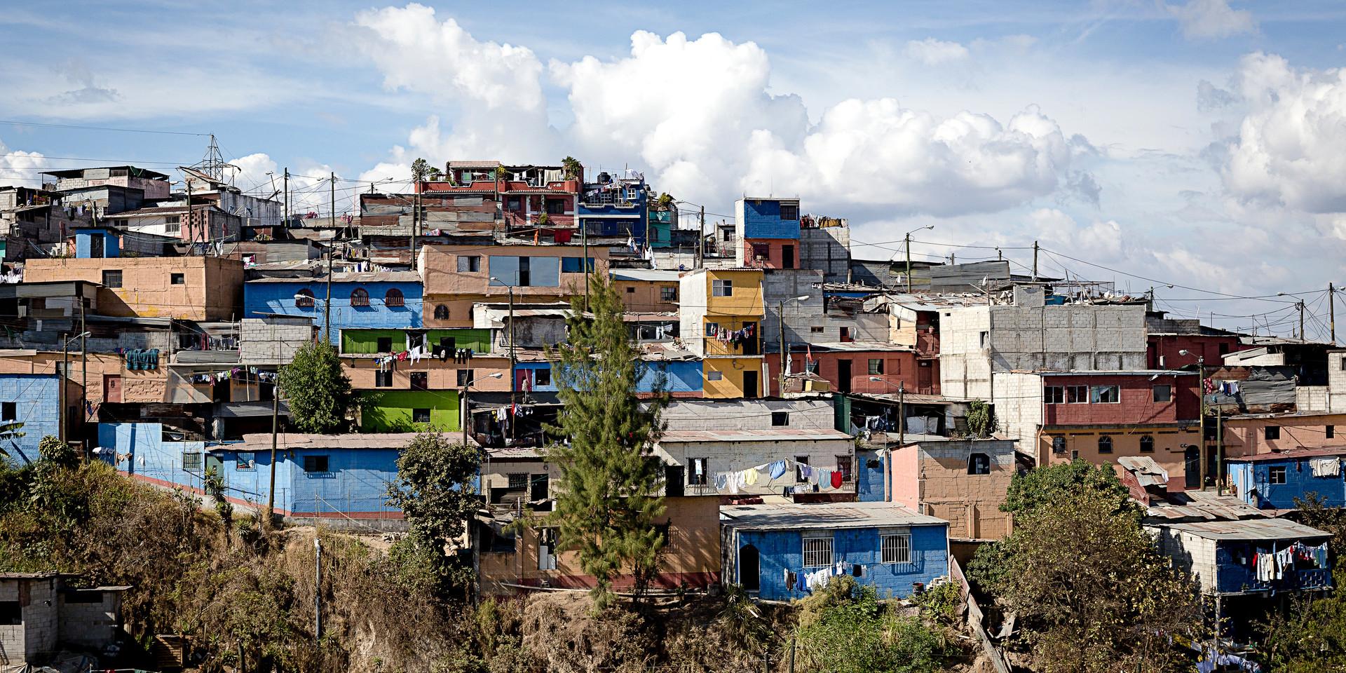 Common hillside community